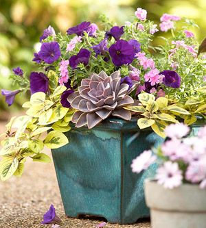 25 different DIY container garden ideas...gorgeous! Take the guess work out.