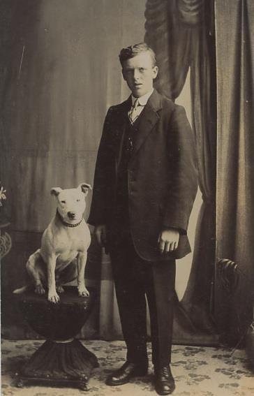 Bull Terrier 1910's