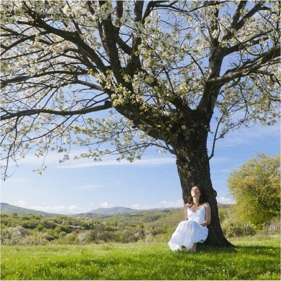 Spring Meditating