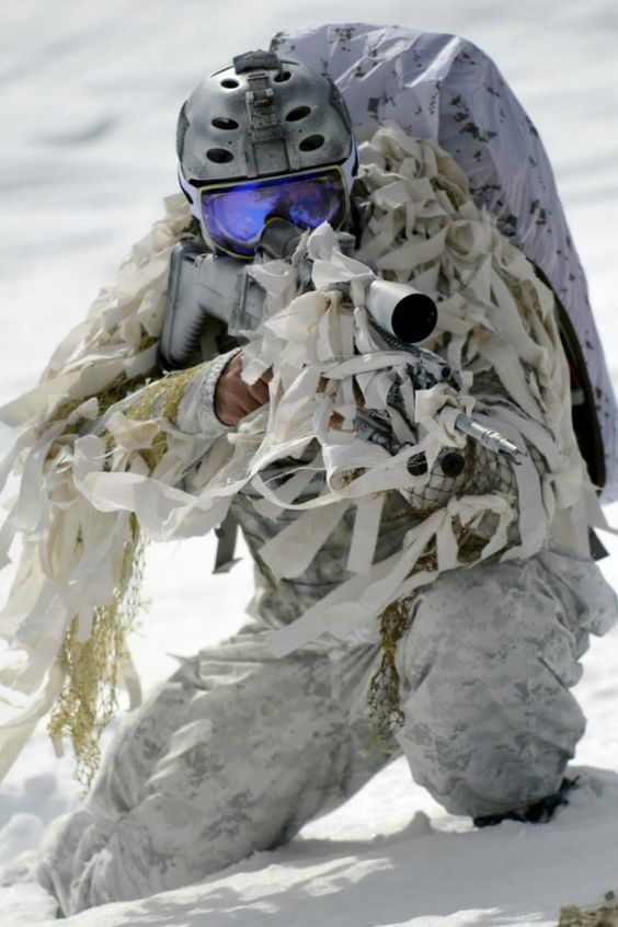 Navy seals, Seals and Navy on Pinterest