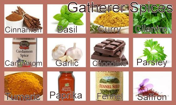 Gatherer Spices: Basil, Cardamom, *Chocolate, *Cilantro, *Cinnamon ...