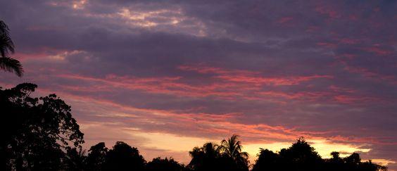 Sunrise over the Pantanal. - Sunrise over the Pantanal.
