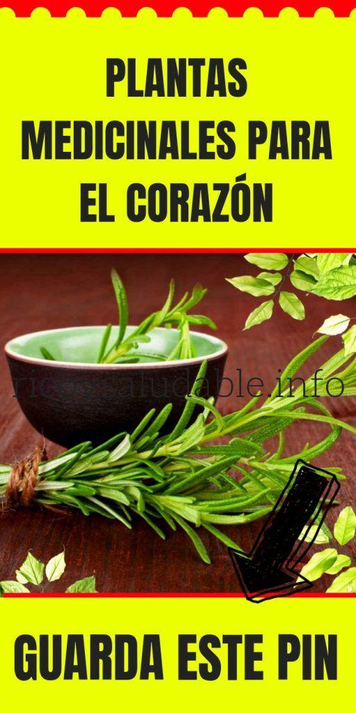 Plantas Medicinales Para El Corazón Ricoysaludable Info Plantas Medicinales Hierbas Curativas Remedios Naturales