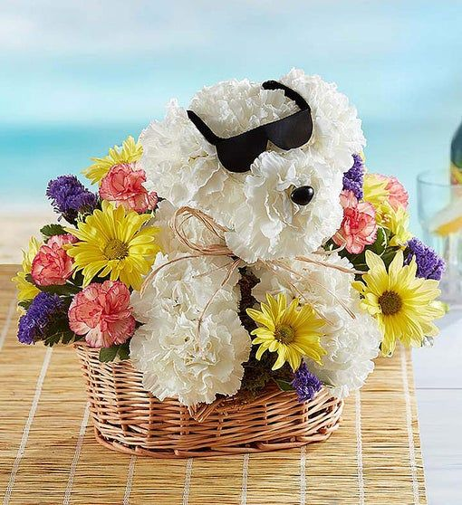 Christmas Lights 33455 2020 Cool Pup™ in 2020   Father's day flowers, Plant gifts, Solar