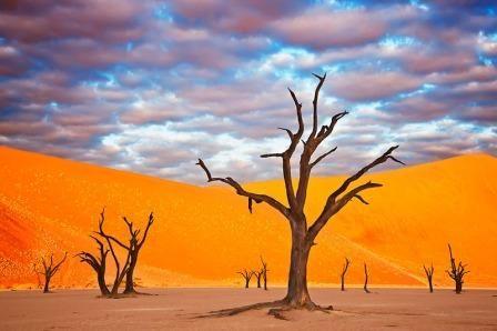Nambia... stunning