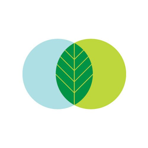 Ignore the blue and light green on the right. Love the two-toned leaf image. Simple. Clean. Iconic.