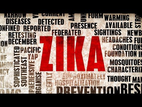 In recent weeks, many news reports suggest there may be a strong connection between new cases of microcephaly in Brazil and the Zika virus outbreak there.