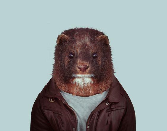 European Mink (Mustela Lutreola) Zoo Portraits by Yago Partal