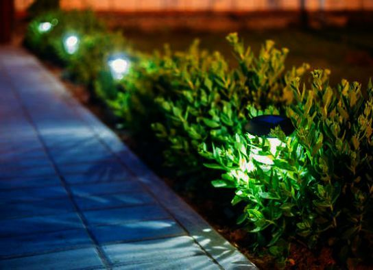 How To Incorporate Multiple Plants In A Great Landscape Design With Images Solar Lights Garden Hedges Landscaping Best Outdoor Solar Lights