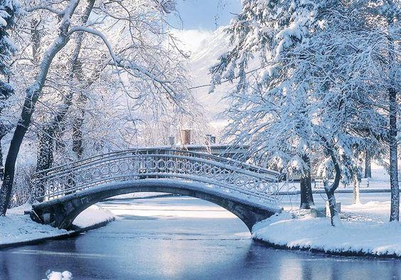 Wintertraum ❄🌨⛄