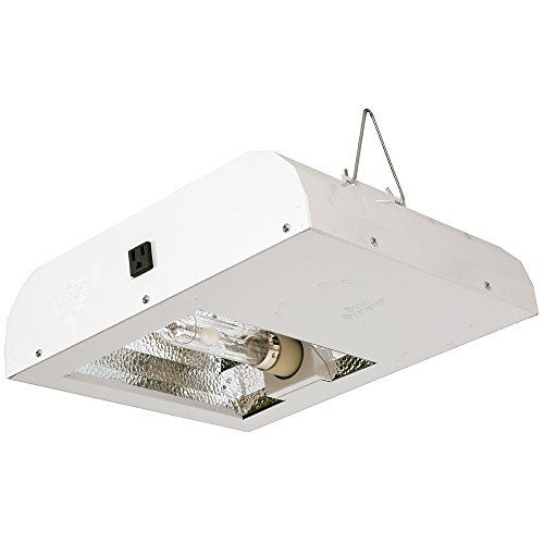 Cheap Sun System Grow Lights Diamond Lec 315w 120v 3100k Lamp Indoor Fixture For Hydroponic And Gree Indoor Grow Lights Grow Lights Best Solar Lights