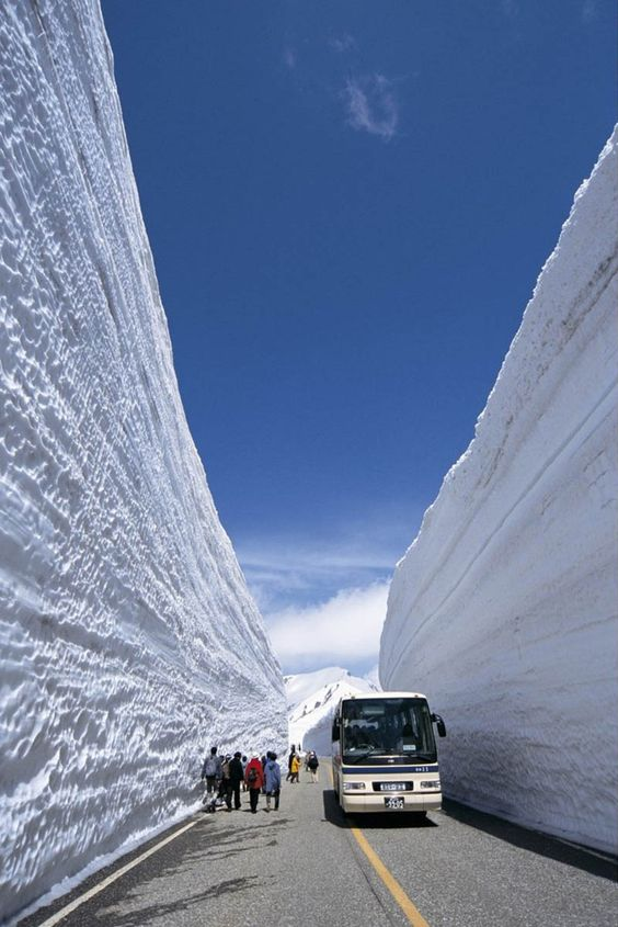 Alpine route. Snow wall. Japan