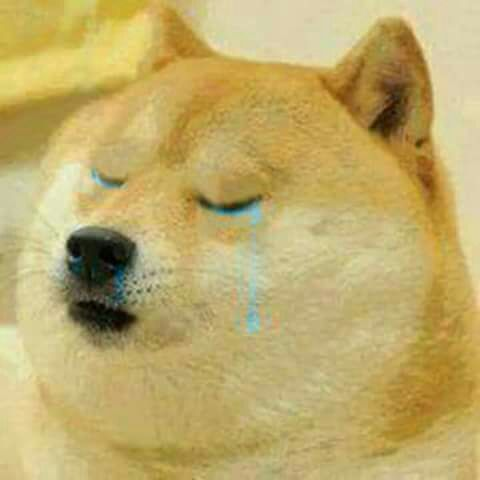 One Shots Harry Potter In 2020 Doge Meme Cute Animal Memes Meme Template
