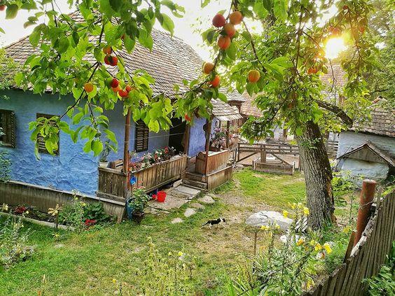 Foto Sorin Onișor, https://www.facebook.com/photo.php?fbid=10154398894623739&set=a.10154145149733739.1073743823.663593738&type=3&theater