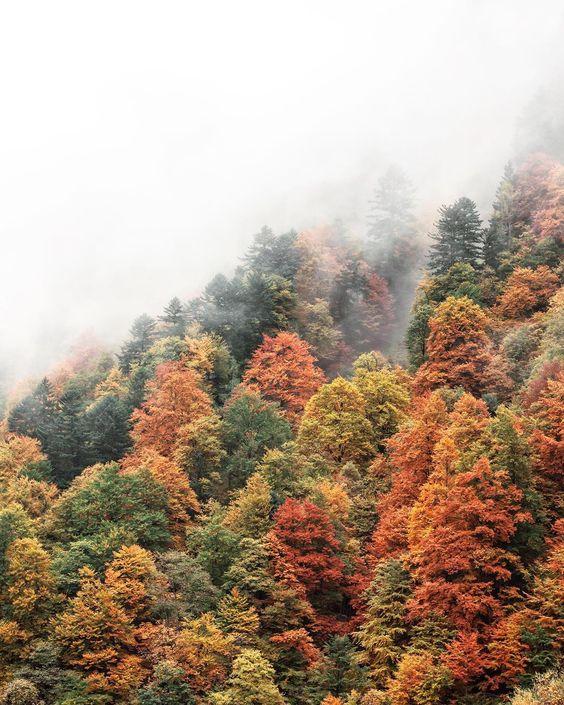 One of my favorite autumn experiences was the trip to Kaprun, Austria, two years ago.