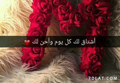 Calligraphy Quotes Love Wisdom Quotes Life Arabic Quotes
