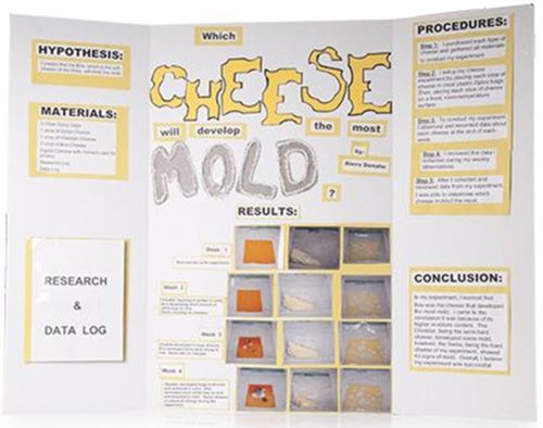 steps to a science fair project Your science fair project may require a lab report or essay this is a general outline showing how to prepare a report to document your research.