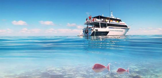 Diving at the Great Barrier Reef with Pro Dive Cairns