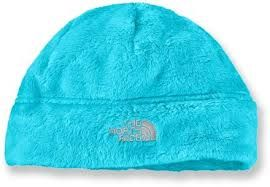 fuzzy blue north face hat