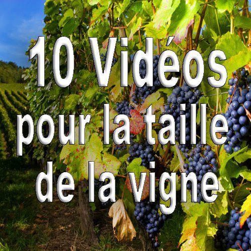 Actualites Latailledesarbresfruitiers Fr