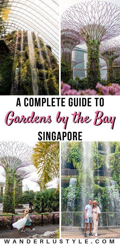 87167fc42f2a67da3dd76d264c6f43a4 - Guide To Gardens By The Bay