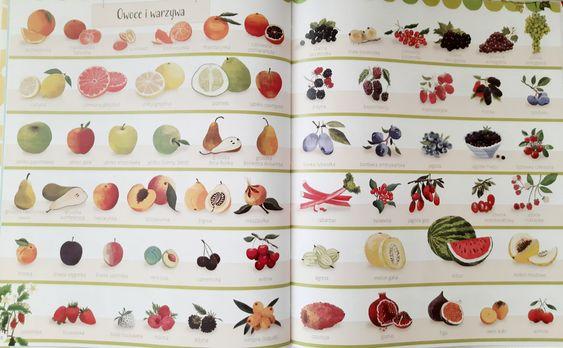 Encyklopedia obrazkowa