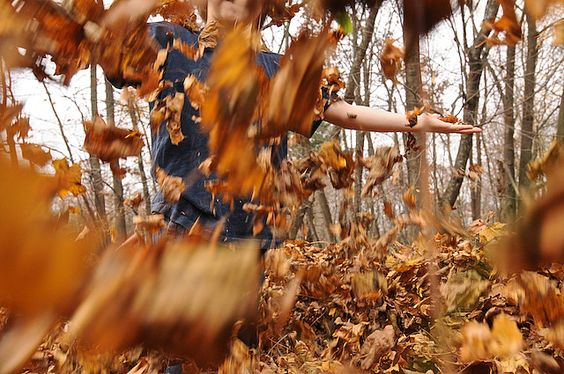 I remember as a kid, raking the leaves in a pile then jumping & playing in them. Oh the simpler times!