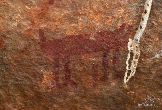 Animal quadrúpede. Figura rupestre na Localidade Malvinas, região de Castelo do Piauí (PI). Foto de Juscel Reis.