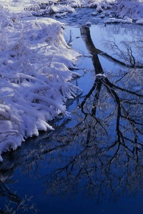 """In the bleak mid-winter/ Frosty wind made moan,/ Earth stood hard as iron,/ Water like a stone;/ Snow had fallen, snow on snow,/ Snow on snow,/ In the bleak mid-winter/ Long ago.   -Christina Rossetti, """"Mid-Winter,"""" 1875"""