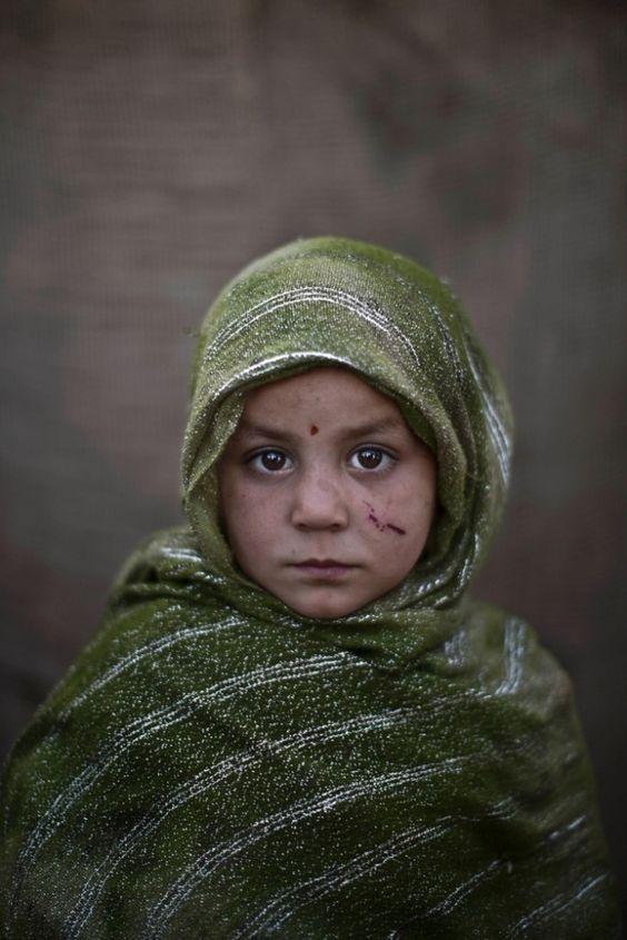 refugees essay