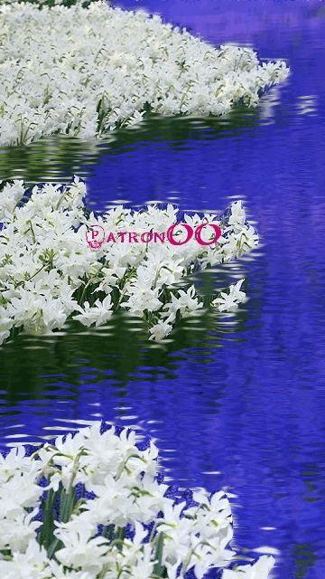 Картинки 360640 о весне