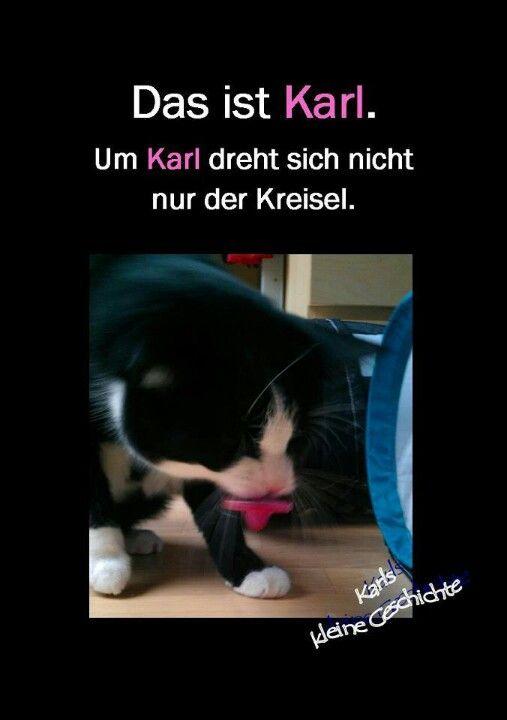 Karl, Kreisel