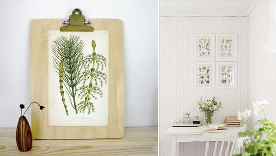 decoracion-laminas-botanica
