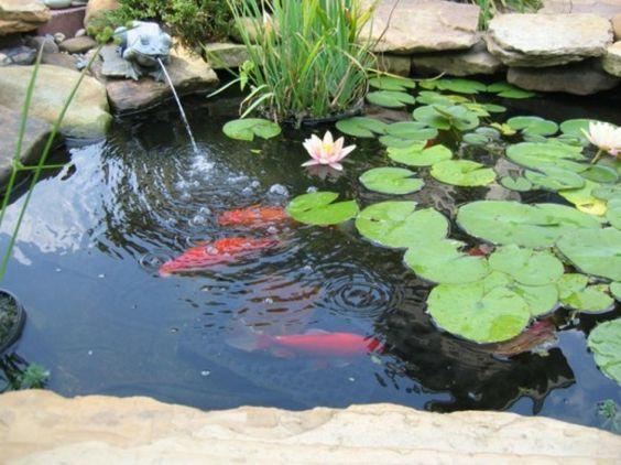 27 idéés pour le bassin de jardin préformé , hors sol ...