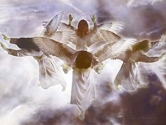 .After this I saw four angels standing at the four corners of the earth, holding back the four winds of the earth to prevent any wind from blowing on the land or on the sea or on any tree.   Rev. 7:1