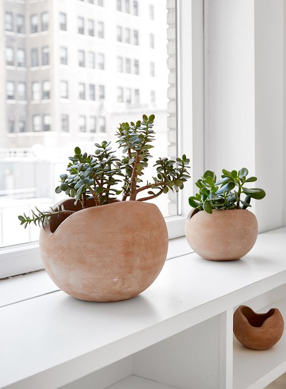 Clay pots are very decorative and can be of diverse and very original shapes and colors.