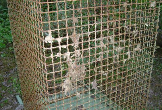 Stanley Roy informa: Niña vivía cautiva en una jaula electrificada