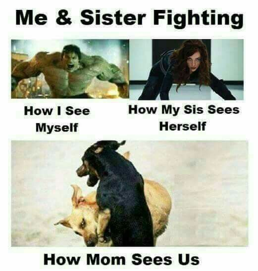 Pin By Laura Beth Dupuy Russell On Sista Siblings Funny Quotes Very Funny Memes Sister Quotes Funny