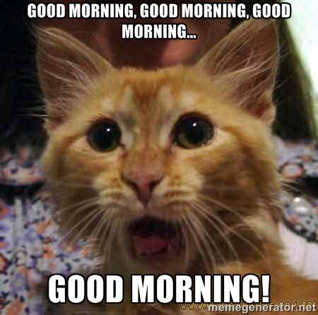 good morning, good morning, good morning... good morning! - Crazy ...