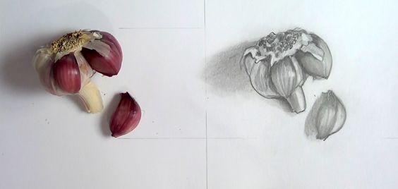 Como Fazer : Desenho de Observação