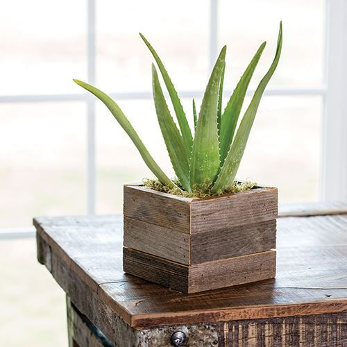 Aloe Vera In Reclaimed Wood Wood Succulent Planter Succulent Planter Diy Plants