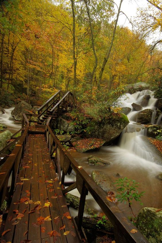 Fall Hike at South Mountains State Park in North Carolina