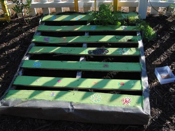 For garden beds and decor, recycle and reuse pallets. The form of a pallet makes excellent rows for seed plants, such as radishes and lettuce, says Georgia teacher Shawna McGrath.
