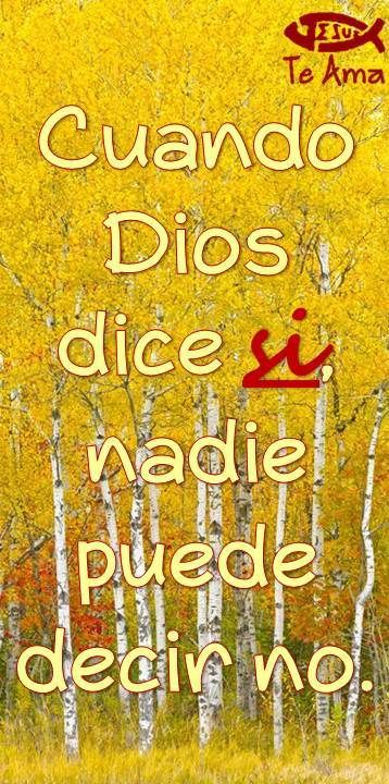 La voluntad de Dios es irrevocable! facebook.com/jesusteamamgaministries