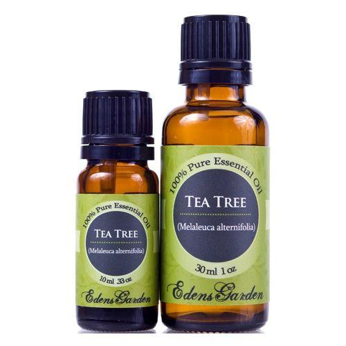 Tea tree tea tree essential oil and teas on pinterest - Are edens garden essential oils ingestible ...