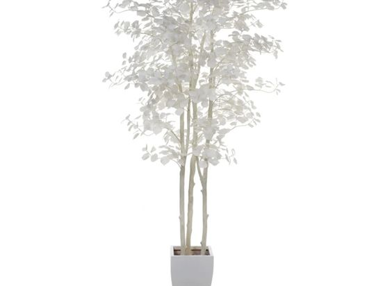 Aspen Tree - Ivory | Potted-plants-trees | Botanicals-plants | Accessories | Decor | Z Gallerie