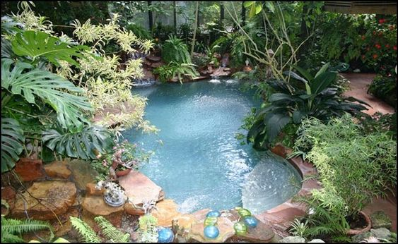 Covered patios swimming and greenhouses on pinterest for Pool inside greenhouse