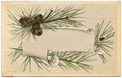 Vintage Christmas Graphics - Pine Branch Frame - The Graphics Fairy - potential DIY christmas card