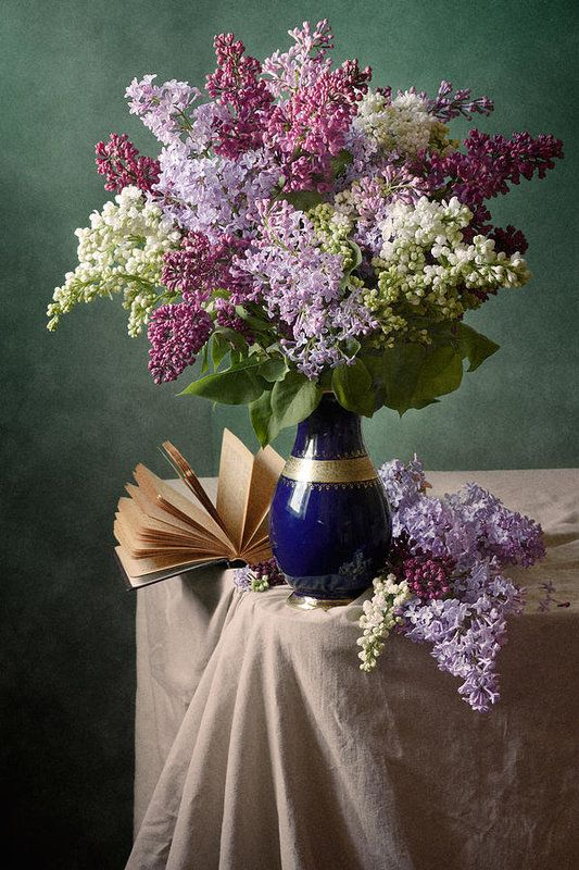 Colorful Blooming Lilac Art Print By Nikolay Panov Beautiful Flowers Photography Floral Poster Beautiful Flowers