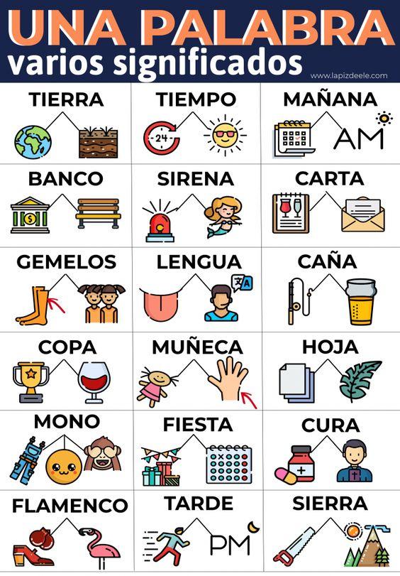 Palabras polisémicas en español.  Una palabra, varios significados.  Infografía para ELE.
